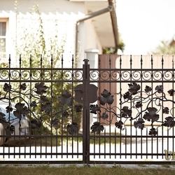A vine embedded in a wrought iron gate